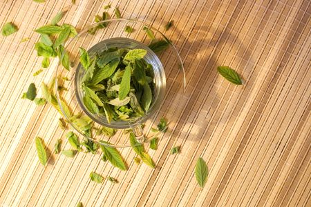 Leaves in cup. Stock Photo - 6639398