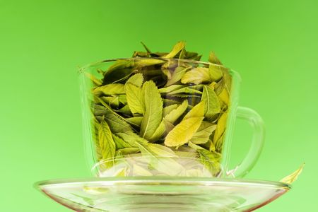 Leaves in cup. photo