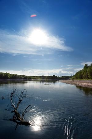 snag: riverscape with snag & sun Stock Photo