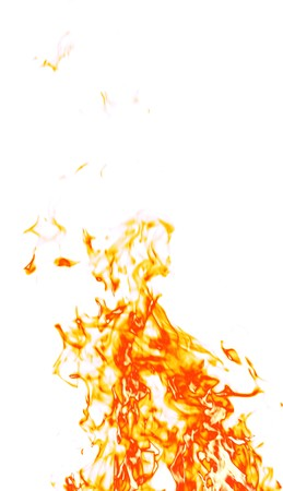isolated in white background: Fire on a white background. Stock Photo