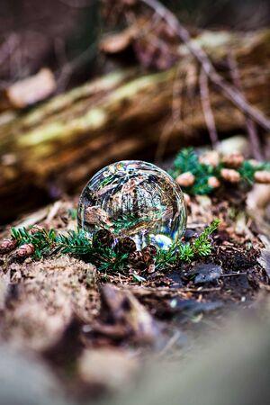 Scotland nature photography