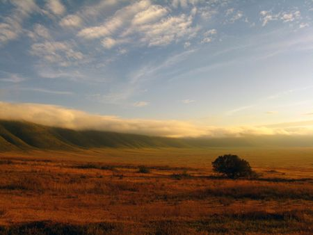 Ngorongoro Crater photo