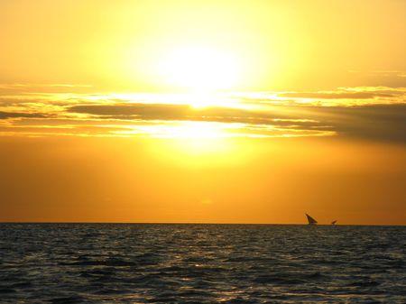 zanzibar: Zanzibar zonsondergang