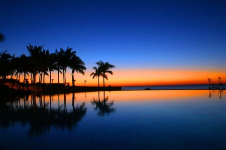 palmtree: Cabo Sunrise