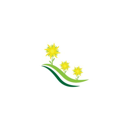 Edelweiss Logo Template vector symbol nature