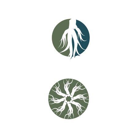 Ginseng Logo Template vector symbol nature