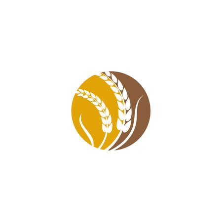 Wheat Logo Template vector symbol nature