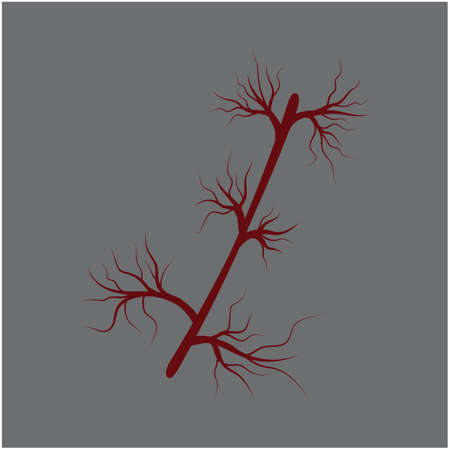 Veins Logo Template vector symbol medical design