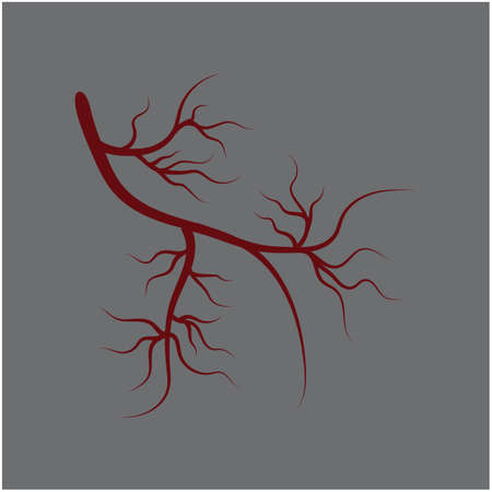 Veins Logo Template vector symbol medical design