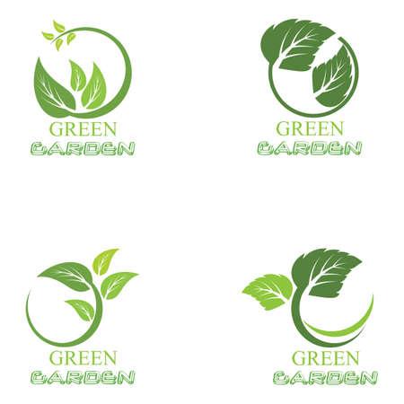 Leaf icon Vector Illustration design Logo template Logo