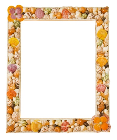 shells frame photo