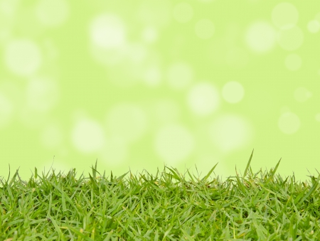 Green grass with abstract background blurring photo