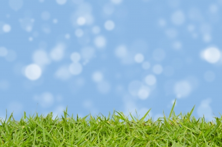 Green grass and abstract background blurring photo
