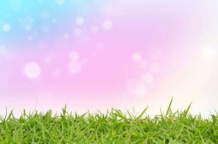 scenic background: Green grass and abstract background blurring