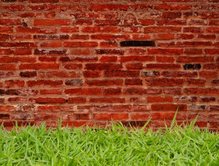 green grass and brick wall background Stock Photo