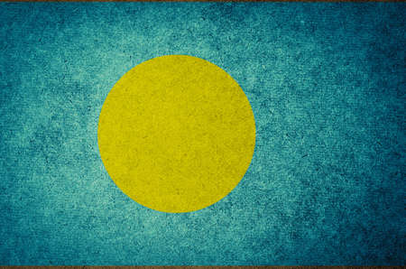 Grunge Flag of Palau photo