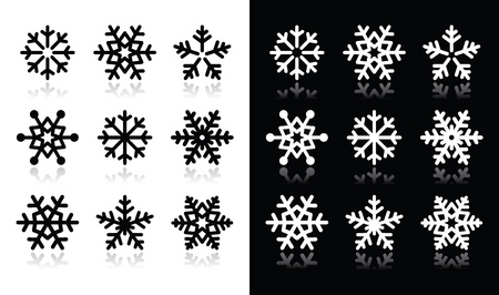 Snowflakes icons with shadow on black and white background Vector