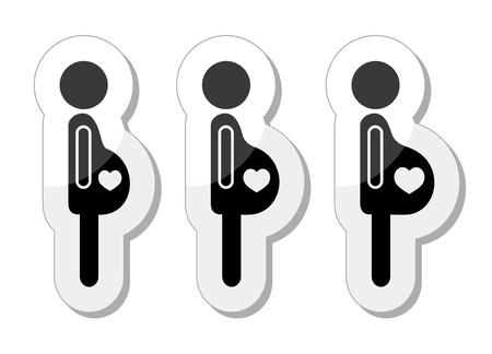 feto: La mujer embarazada - etapas de iconos bump configurado