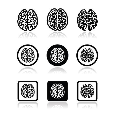 Human brain icons set - intelligence, creativity concept Illustration