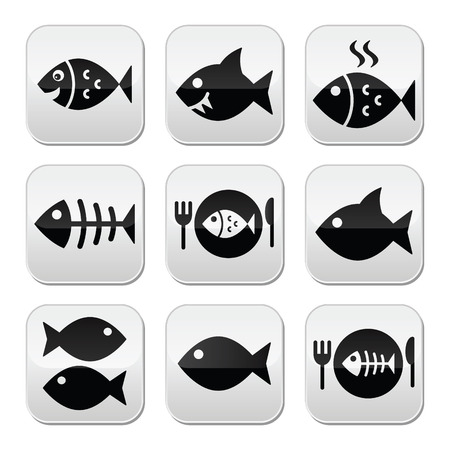 fish meal: Fish, fish on plate and skeleton buttons
