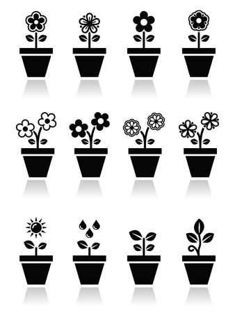 pflanzen: Blume, Pflanze im Topf Symbole gesetzt Illustration