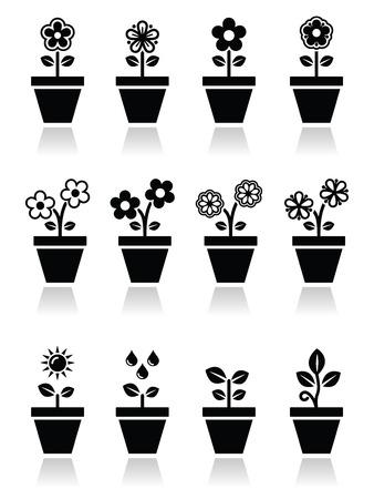 jardines flores: Flor, planta en maceta iconos set