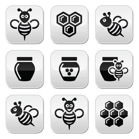 queen bee: Abeja y miel iconos conjunto de vectores