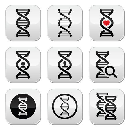 DNA, genetyka Wektor zestaw przycisków