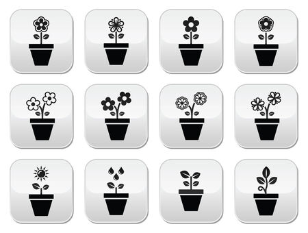 plant pot: Flower, plant in pot vector icons set