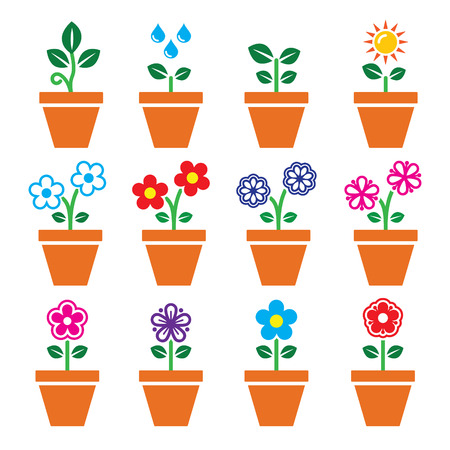 Flower, plant in pot vector colorful icons set Vector