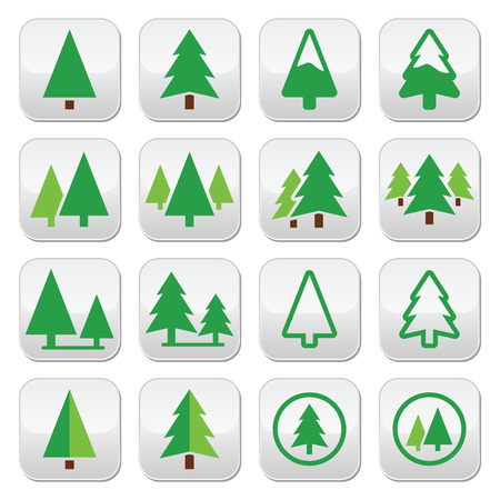 pine three: Pine tree, park vector green icons set