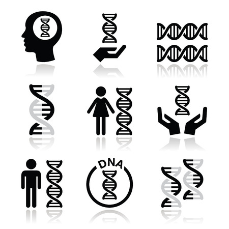 inherit: Human DNA, genetics vector icons set