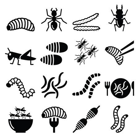 insecto: Comestibles gusanos e insectos iconos - fuente alternativa de proteínas