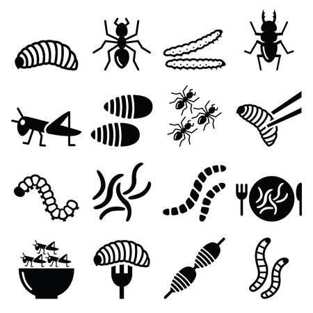 insect: Edible worms and insects icons - alternative source on protein