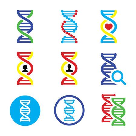 genetica: DNA, genetica icone set Vettoriali