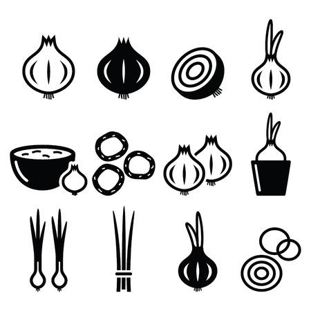 onion slice: Onion, spring onions icons set Illustration