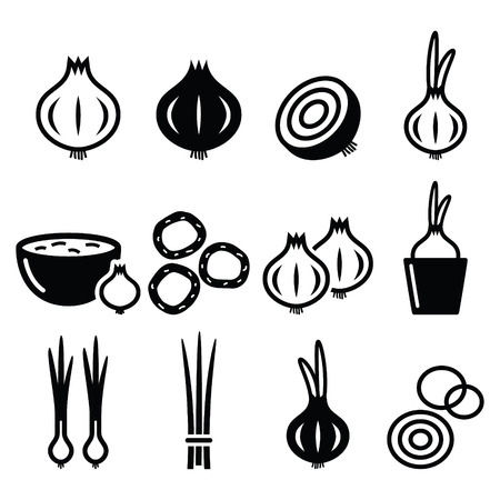 spring onions: Onion, spring onions icons set Illustration