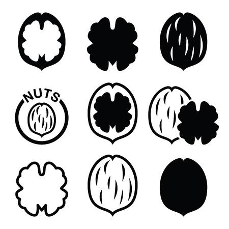Walnut, icônes vectorielles nutshell définies Vecteurs