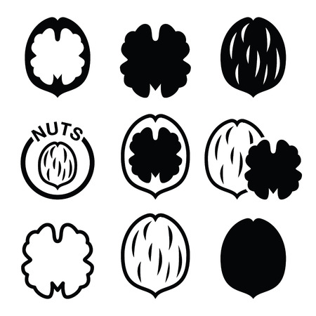 nutshell: Walnut, nutshell vector icons set