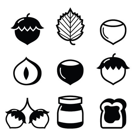 filberts: Hazelnuts, nuts - food icons set Illustration