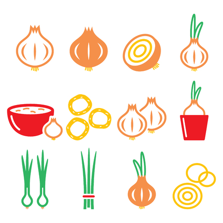scallion: Onion, spring onions colorful icons set