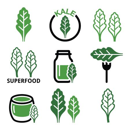 kale: Superfood - kale leaves green icons set Illustration