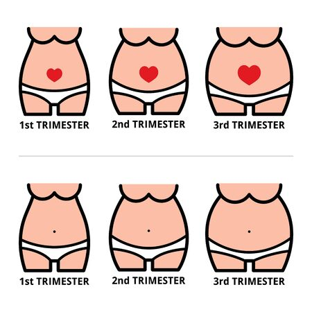 Pregnancy stages icons, pregnant belly design at first, second and third trimester Vettoriali