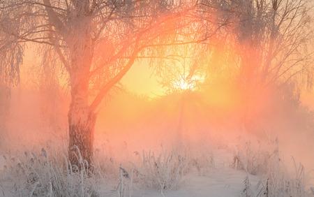 december sunrise: beautiful winter sunrise on the river, frosty Stock Photo