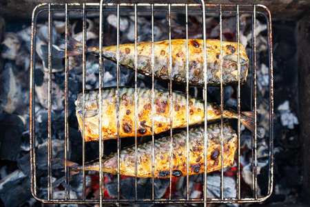 charcoal grilling of mackerel fish at a picnic