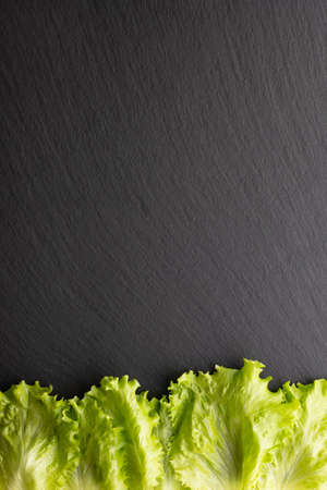lettuce leaf on black stone background, top view, place for text Banco de Imagens