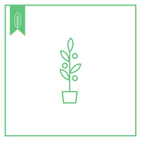 flowerpot: Icon of plant with fruits in flowerpot