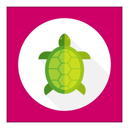 green sea turtle: Turtle icon