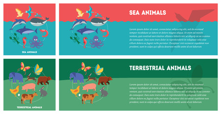 terrestrial: Set of flat design concepts of animal types, including sea animals and terrestrial animals on colored background