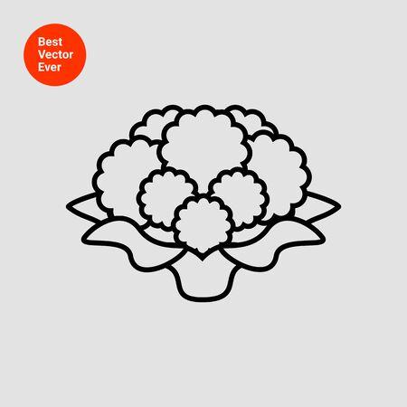 cauliflower: Icon of cauliflower curd Illustration